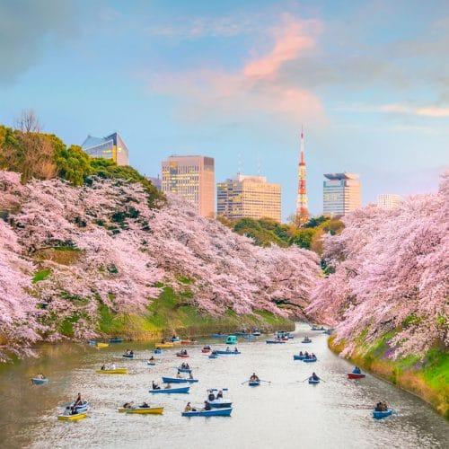chidorigafuchi-park-tokyo